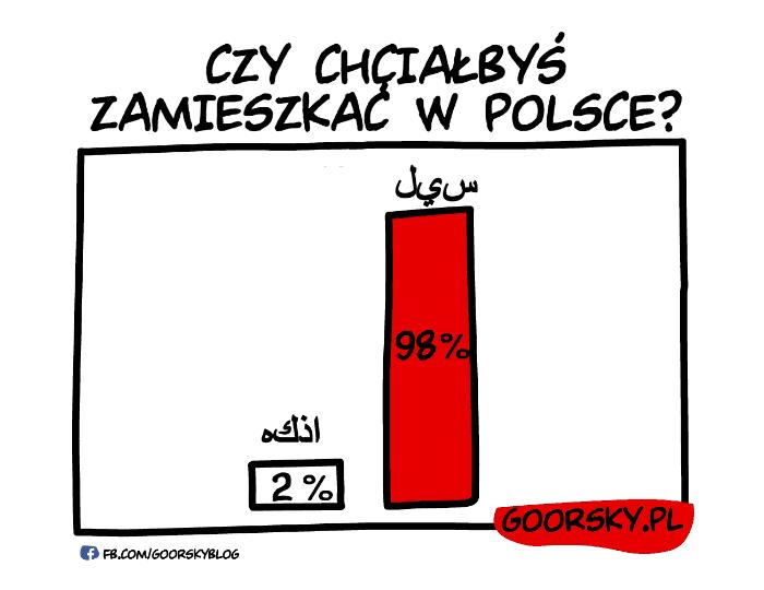 00_sonda2