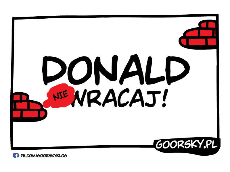 Donald wracaj