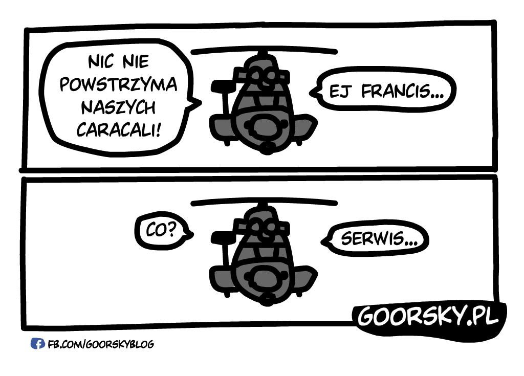 Caracale