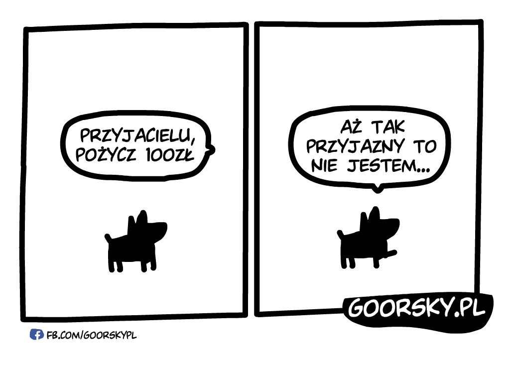 Dzień psa